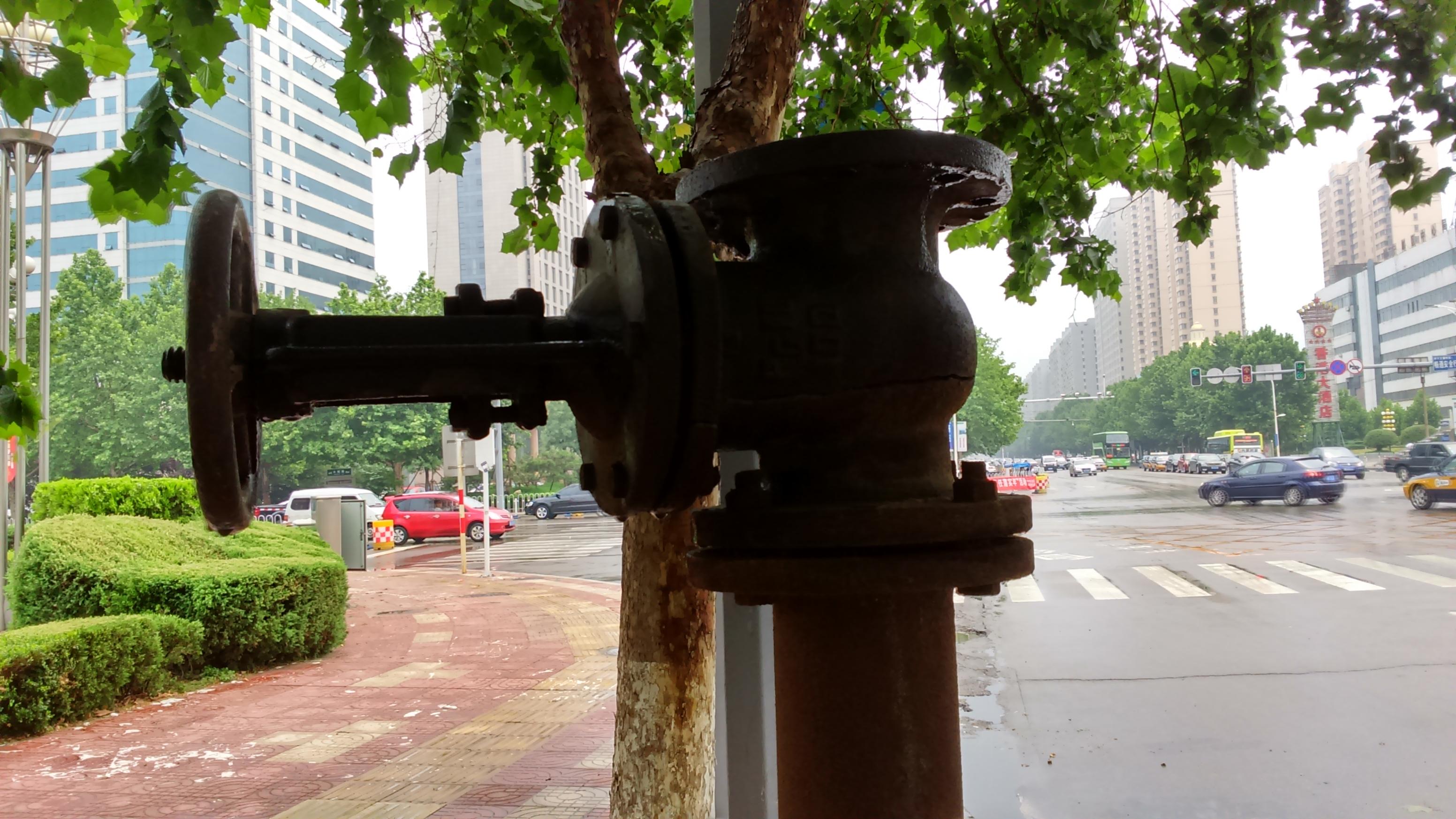 примеры снимков камеры Xperia T3