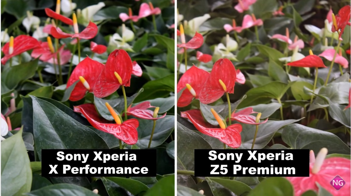 Xperia-Z5-Premium-vs-Xperia-X-Performance-camera-comparison-2