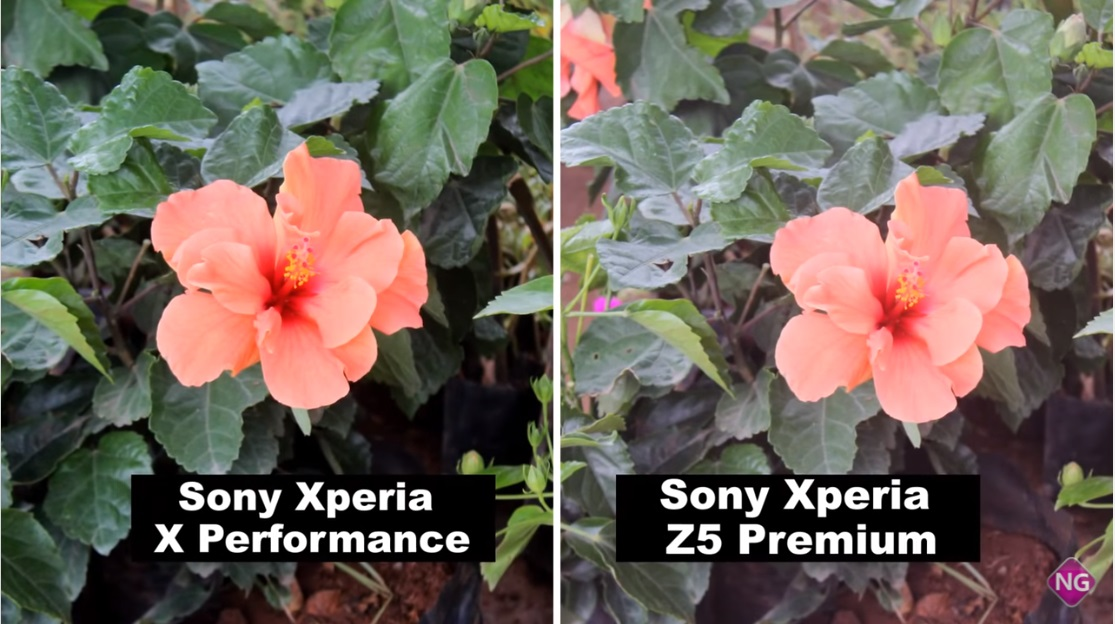 Xperia-Z5-Premium-vs-Xperia-X-Performance-camera-comparison-6