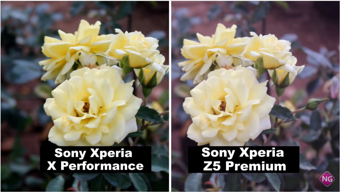 Xperia-Z5-Premium-vs-Xperia-X-Performance-camera-comparison-7