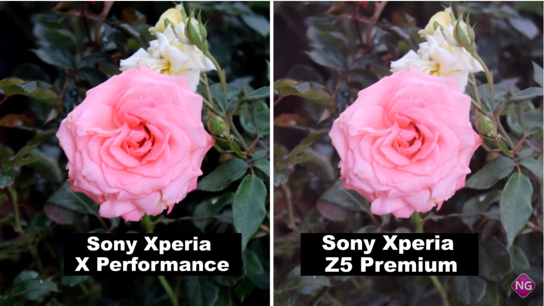 Xperia-Z5-Premium-vs-Xperia-X-Performance-camera-comparison-8