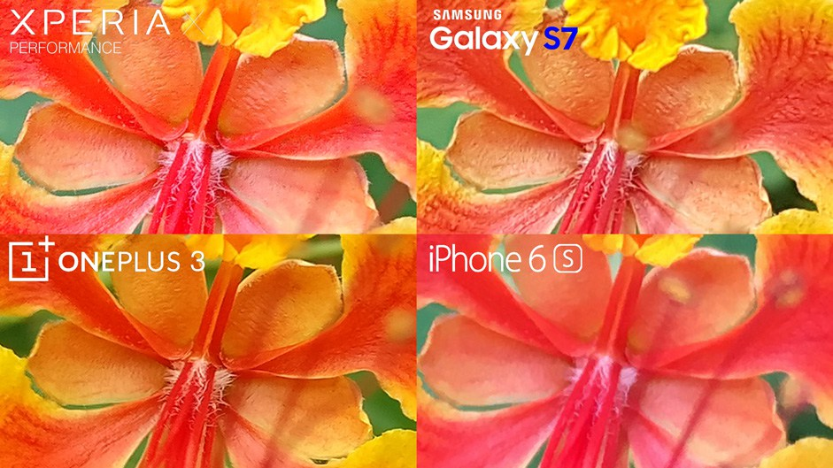 Xperia-X-Performance-vs-Galaxy-S7-iphone-6s-comparison-cameras-macro-2
