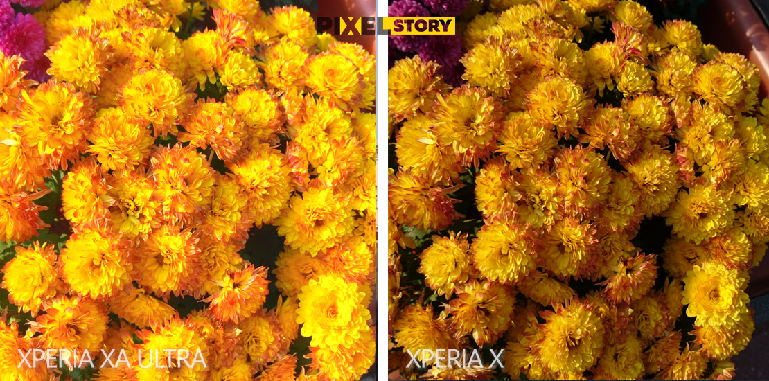 sony-xperia-xa-ultra-vs-xperia-x-camera-comparison-6