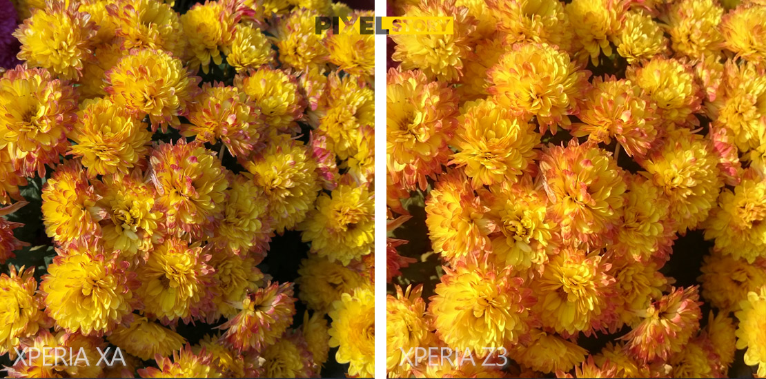 xperia-z3-vs-xperia-xa-camera-comparison-2