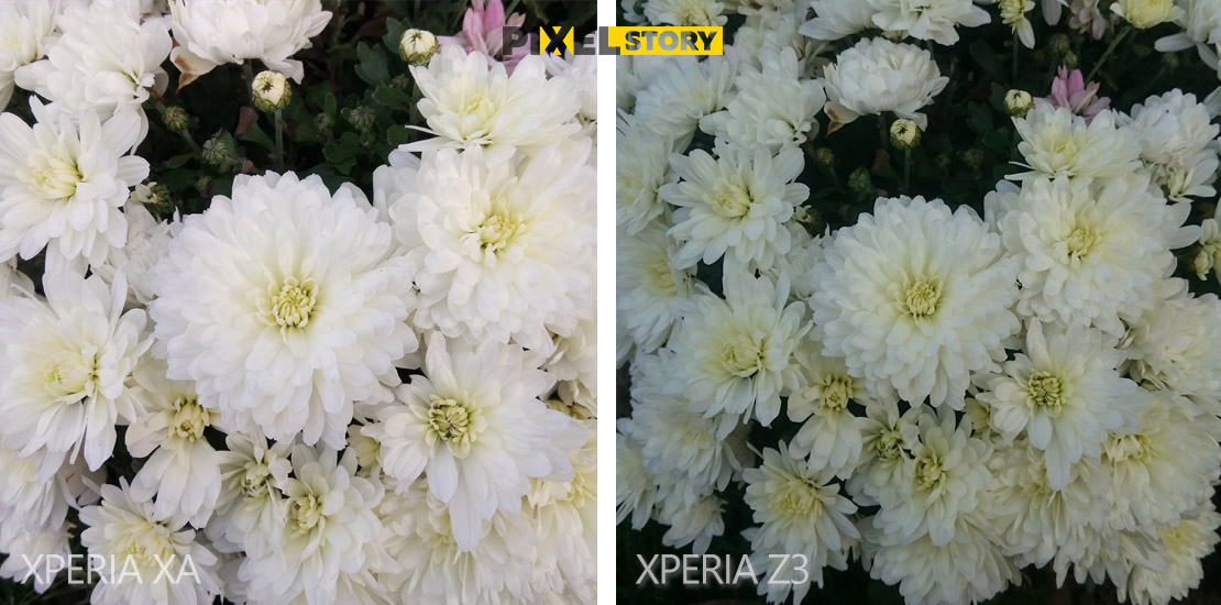 xperia-z3-vs-xperia-xa-camera-comparison-4
